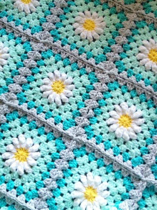 Square Blooms Color Daisy